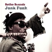 Play & Download Junk Funk by Sotho Sounds | Napster