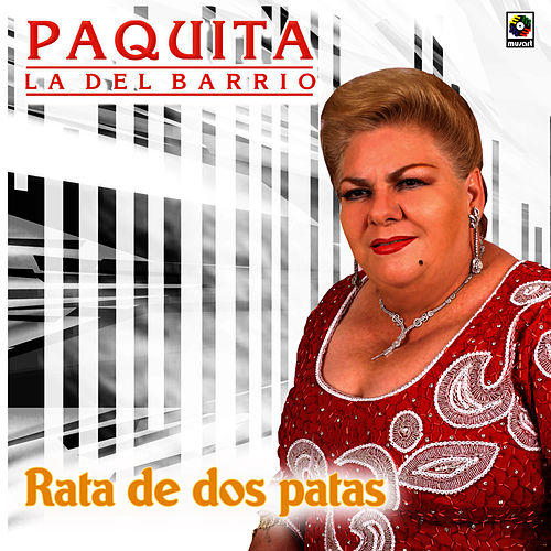Play & Download Rata de Dos Patas by Paquita La Del Barrio | Napster
