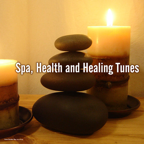 Spa, Health and Healing Tunes by Various Artists