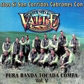 Play & Download Pura Banda Tocada Compa Vol.V by Banda El Valle | Napster