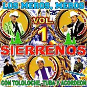 Con Tololoche, Tuba Y Acordeon Vol.1 by Various Artists