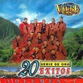 Play & Download 20 Exitos De Oro by Banda El Valle | Napster