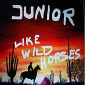 Play & Download Like Wild Horses by Junior | Napster