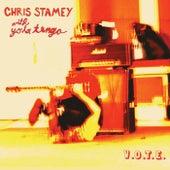V.O.T.E. von Chris Stamey