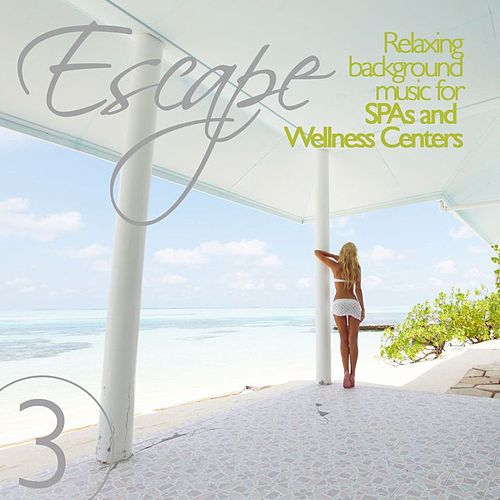 Escape Vol. 3 Relaxing Background Music for SPAs and Wellness Centers by Various Artists