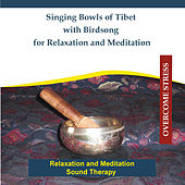 Play & Download Singing Bowls of Tibet With Birdsong for Relaxation and Meditation - Sound Therapy by Rettenmaier | Napster