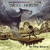 In the Storm by Steel Horse