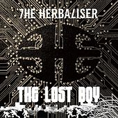 Play & Download The Lost Boy - Single by Herbaliser | Napster