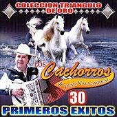 Play & Download 30 Primeros Exitos by Los Cachorros de Juan Villarreal | Napster