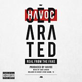 Separated (Real from the Fake) by Havoc