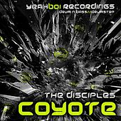 Play & Download Coyote - Single by Various Artists | Napster