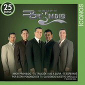 Play & Download Íconos 25 Éxitos by Grupo Bryndis | Napster