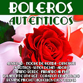 Play & Download Boleros Auténticos by Various Artists | Napster