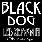 Play & Download Black Dog by Led Zepagain | Napster