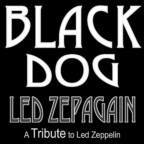 Black Dog by Led Zepagain