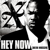 Play & Download Hey Now (Mean Muggin) by Xzibit | Napster