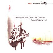 Play & Download Common Cause by Attila Zoller | Napster