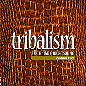 Play & Download Tribalism Vol.5 - The Urban House Sound by Various Artists | Napster