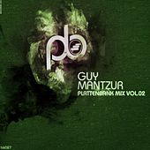 Play & Download Guy Mantzur's Plattenbank Compilation Vol.2 (mixed by Guy Mantzur) by Various Artists | Napster