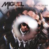Kaleidoscope Dream de Miguel
