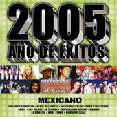 2005 Año De Exitos Mexicano by Various Artists