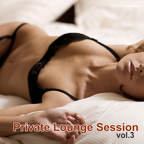 Private Lounge Session Vol.3 by Various Artists