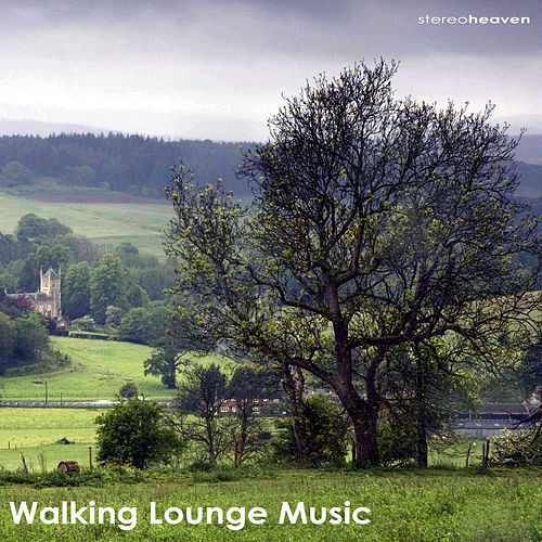 Walking Lounge Music by Various Artists