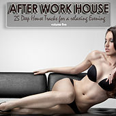 Play & Download After Work House, Vol. 5 - 25 Deep House Tracks For A Relaxing Evening by Various Artists | Napster