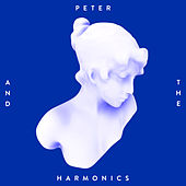 Play & Download Make Up Your Mind by Peter | Napster