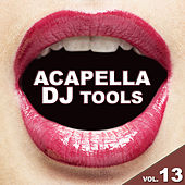 Play & Download Acapella DJ Tools, Vol. 13 by Various Artists | Napster