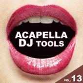 Acapella DJ Tools, Vol. 13 by Various Artists