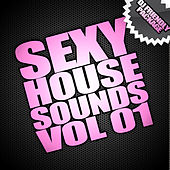 Sexy House Sounds Vol 1 (DJ PACKAGE) by Various Artists