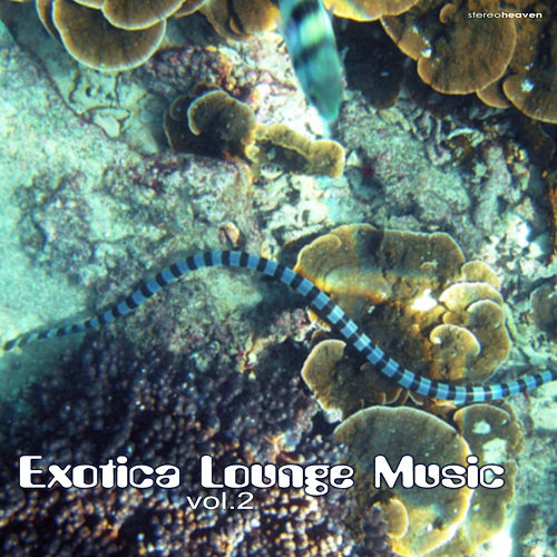 Exotica Lounge Music Vol.2 by Various Artists