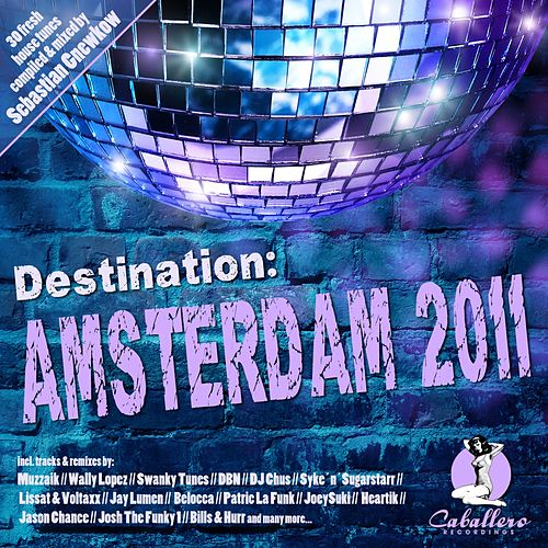 Play & Download Destination: Amsterdam 2011 by Various Artists | Napster