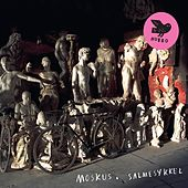 Play & Download Salmesykkel by Moskus | Napster
