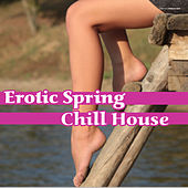 Play & Download Erotic Spring Chill House by Various Artists | Napster
