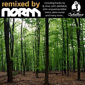 Remixed By Norm by Various Artists