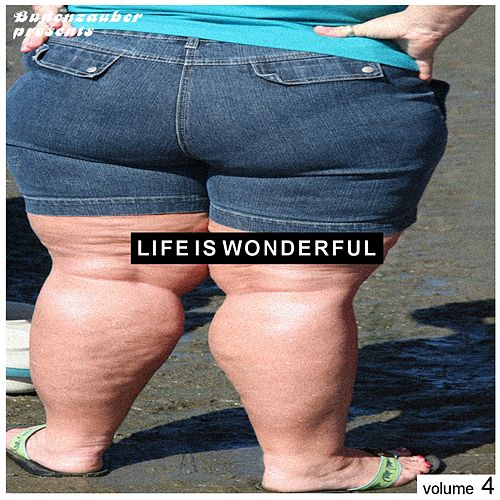 Play & Download Budenzauber pres. Life Is Wonderful Vol. 4 - Minimal Tech-House Edition by Various Artists | Napster