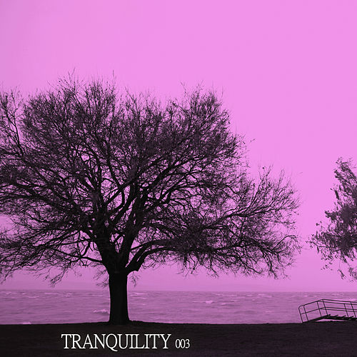 Play & Download Tranquility 003 by Various Artists | Napster