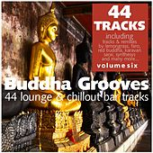 Buddha Grooves Vol. 6 - 44 Lounge & Chillout Bar Tracks by Various Artists