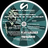 Play & Download Afterhour Is The Pusher by Lützenkirchen | Napster