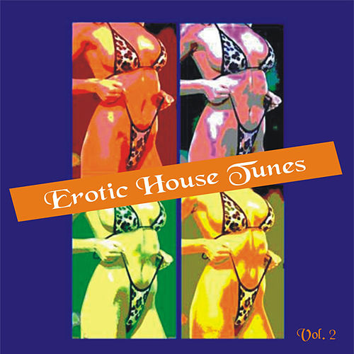 Erotic House Tunes Vol. 2 by Various Artists