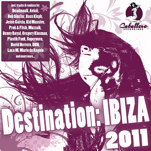 Destination: Ibiza 2011 by Various Artists