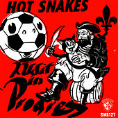 Audit in Progress by Hot Snakes