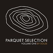 Parquet Selection Vol. 1 by Solee by Various Artists