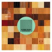 Escape (Remixes) by Robbie Rivera