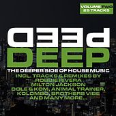 Deep Vol. 2 - The Deeper Side Of House Music by Various Artists