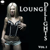 Lounge Delights Vol. 1 by Various Artists