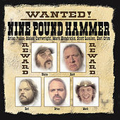 Play & Download Wanted: Country Classics by Nine Pound Hammer | Napster
