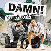 Play & Download Damn! by Youngbloodz | Napster